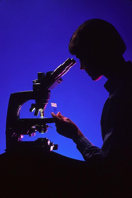 Pathologist Salary: Average Pay, Salary Range, Benefits